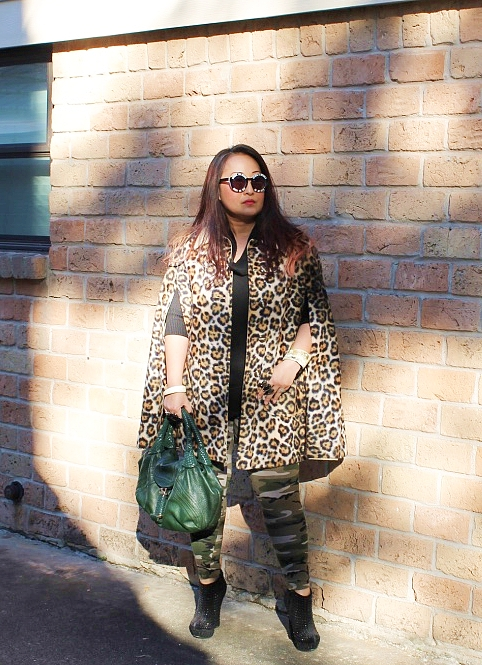 Cheetah, Meet Camo | Sheela Writes